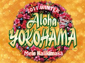 アロハヨコハマ冬、パンフレット完成!