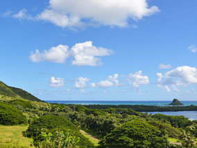 ハワイの大自然をジープで駆け巡る