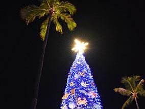 名物クリスマスツリーがついに点灯