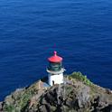 晴れた日は、マカプウ岬でクジラ探し!
