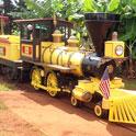 パイナップル畑を走る汽車