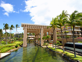 広大なハワイ島ワイコロアヒルトンを探検!