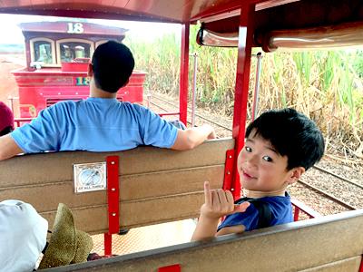 夏休みのハワイ、パイナップル列車の思い出【ドール・プランテーション】