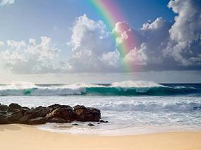 誰も見たことがないハワイを写す若き才能