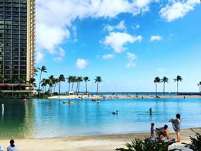今週ハワイで起きたこと〜2月第3週め