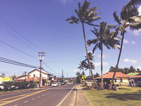 今週ハワイで起きたこと〜4月第1週め