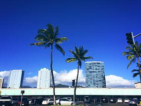 今週ハワイで起きたこと〜4月第2週め