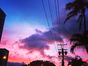 今週ハワイで起きたこと〜6月第3週め