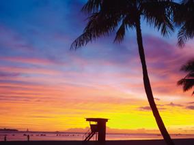 ハワイを感じるアート展開催