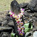 専属ガイドとハワイのマナを探す旅へ
