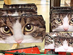 イギリスで注目の猫グッズなど新商品が登場