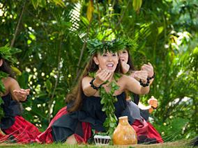 緑豊かな庭園でフラ・フェスティバル開催