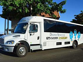 最新バスでイルカツアーがさらに快適に