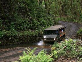 クアロアの新ツアーで大自然を満喫
