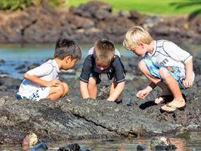 ハワイ島リゾートでのびのびプチ留学体験