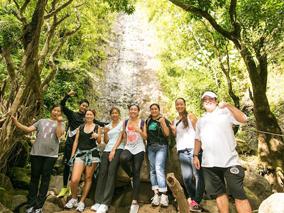 最新ツアーで緑豊かな大自然を探索