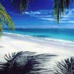 Hawaii&My hawaiian