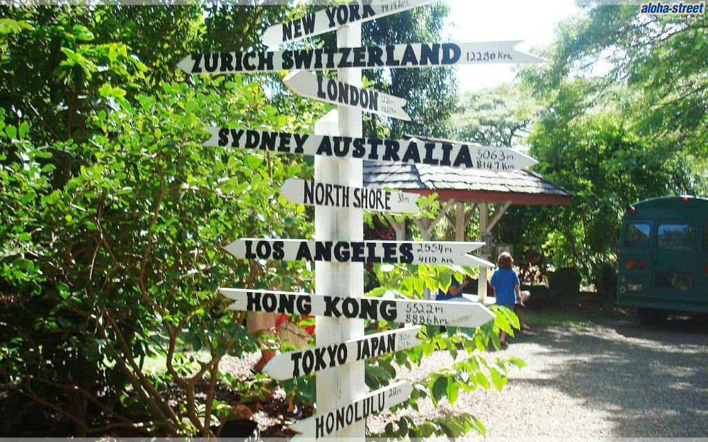 FROMハワイ、どこに行く?