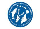 私立イルカ中学/名門イルカ大学/カメ大學/イルカ高等学校/マンタ大学