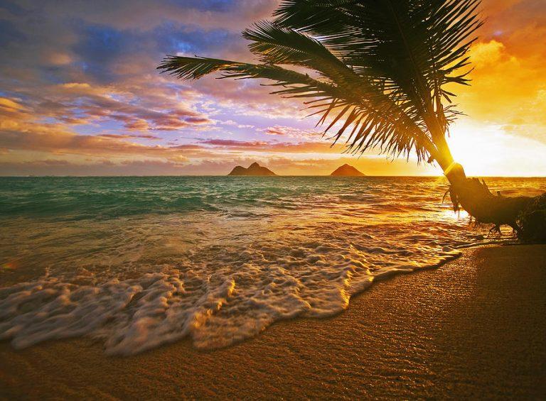 ★お勧め!ハワイで初日の出デート!
