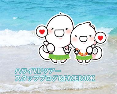 ハワイVIPツアーのブログ&FACEBOOK開始!