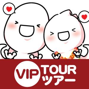 VIP ツアー・ハワイ