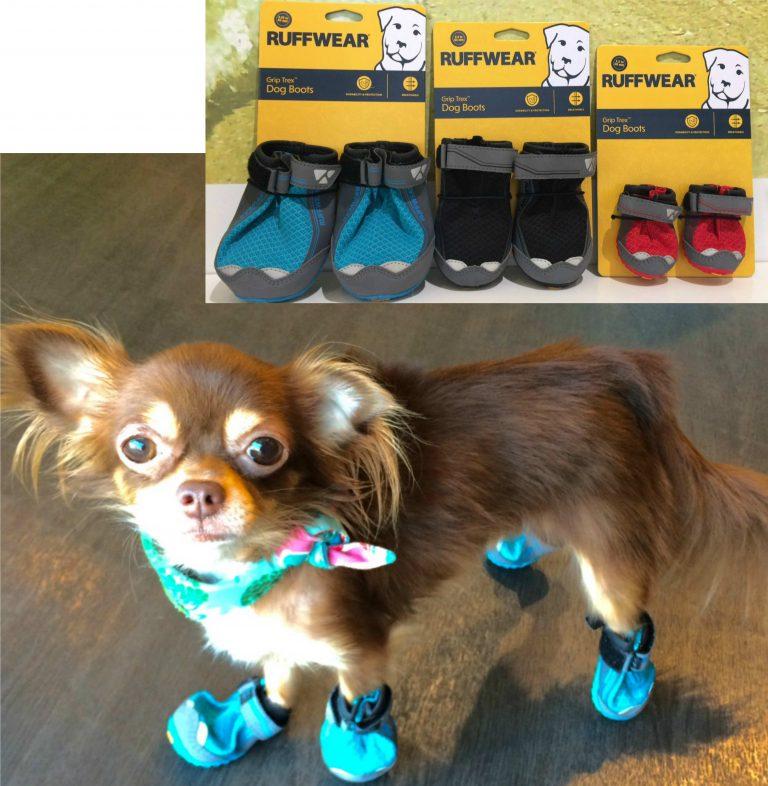 犬とアウトドアを楽しもう! ラフウェア・靴