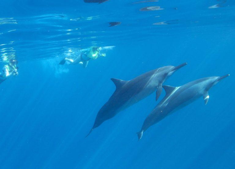 楽園ハワイでスピリチュアルワークショップ