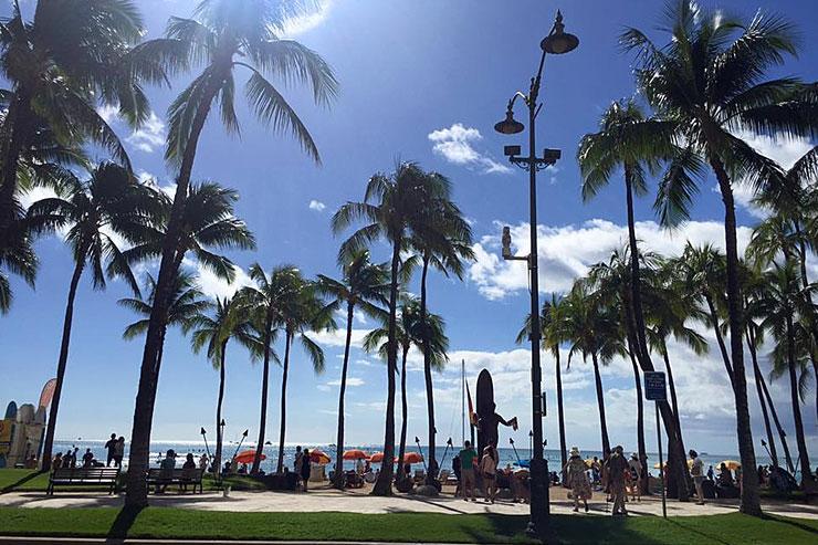 今週ハワイで起きたこと〜11月第3週め