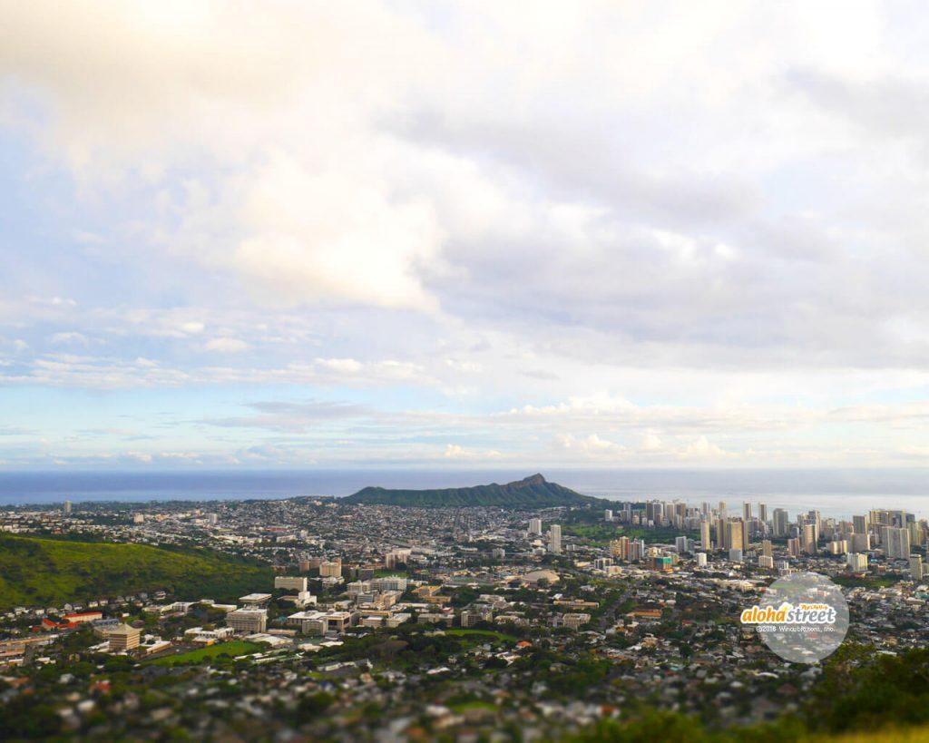 タンタラスの丘から見渡すハワイ