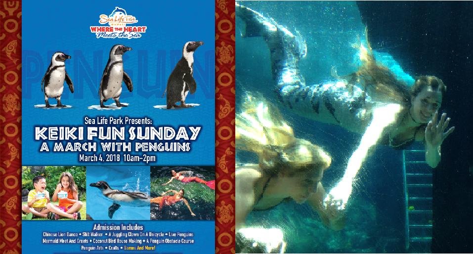 3月4日はケイキサンデイ、ペンギンマーチの日!