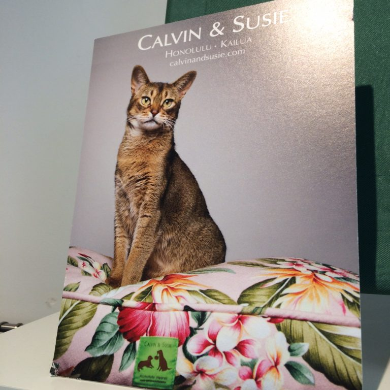 カルビン&スージー・美しいモデルたち - 1