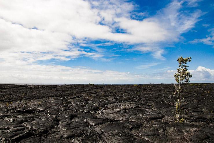 いざ、ペレの地へ…「ハワイ島・キラウエア〜プナ」