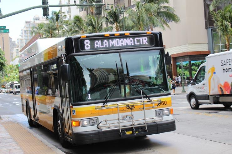 ハワイ初心者もOK!ザ・バスの便利な路線まとめ