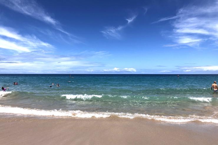 8月のハワイの旬&見所は?海遊びが楽しい季節を満喫