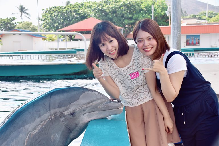 イルカとの記念写真付き!夏休み限定ツアーお客様の声ご紹介