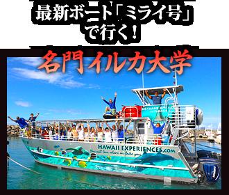 最新ボート「ミライ号」で行く! 名門イルカ大学