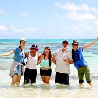 英語を学びながらオアフ島を一周できる海ガメツアー!