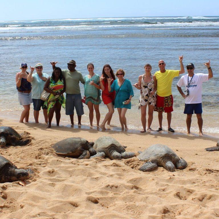 英語での交流とハワイの穴場を堪能できる海ガメツアー!