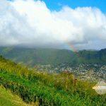 雲が近い!丘から眺めるレインボー