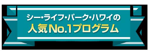 シー・ライフ・パーク・ハワイの人気No.1プログラム