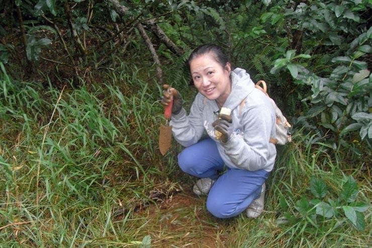 保護区内にコアの苗を植樹。大きく育ってね!