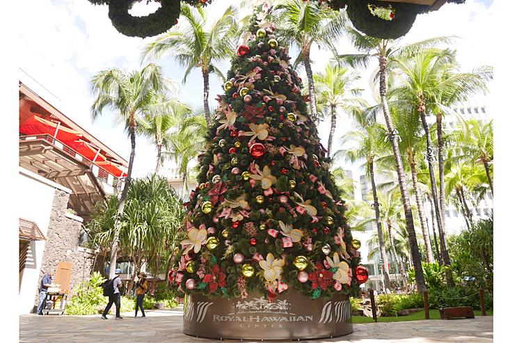 今週ハワイで起きたこと11月第4週め【チャット】