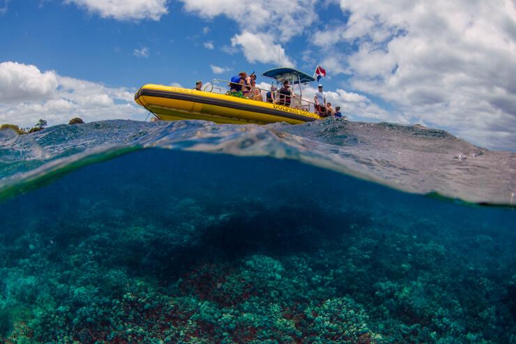 ハワイでこそ体験!人気マリンアクティビティ11選
