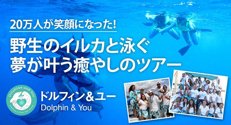 20万人が笑顔になった!野生のイルカと泳ぐ夢が叶う癒やしのツアー ドルフィン&ユー
