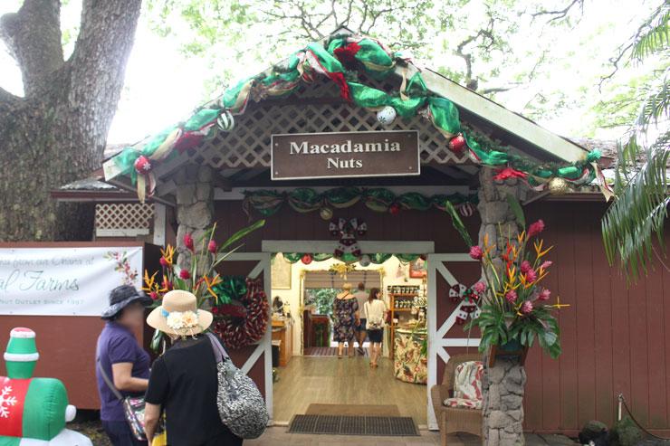 トロピカルファームの入口。