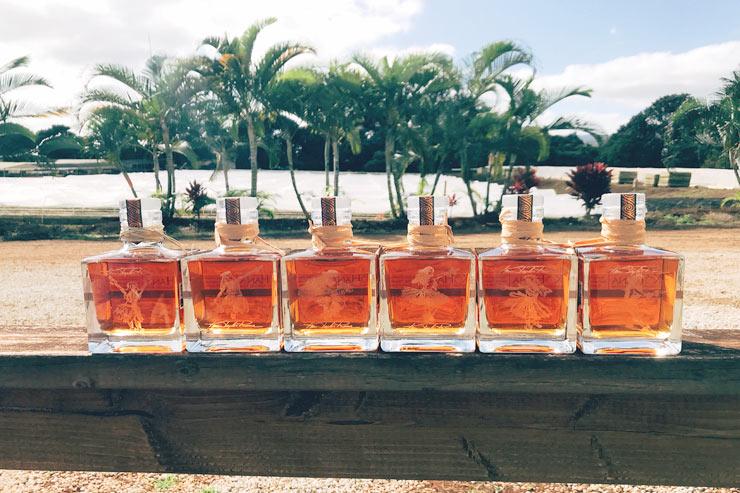 ハワイのラム酒「コハナ」を試飲できるツアーが登場