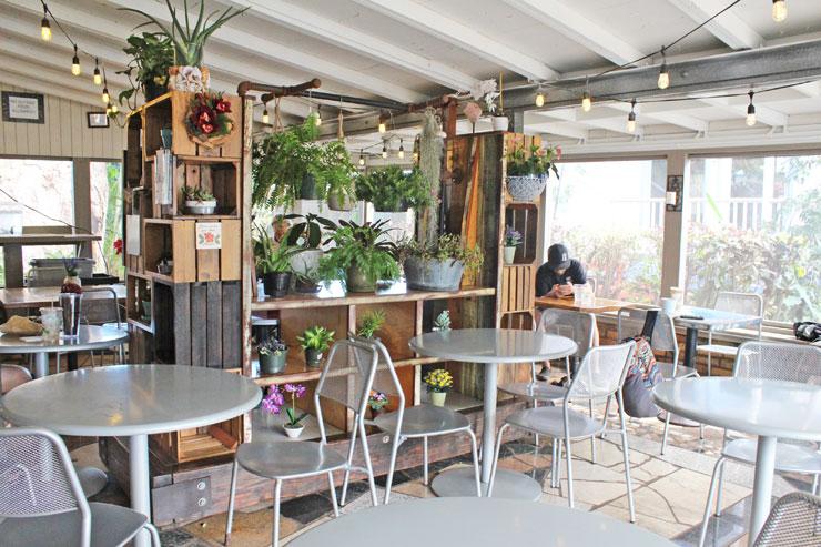コーヒーギャラリーの店内