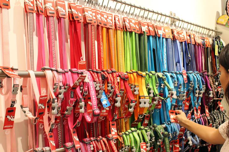 首輪やリーシュも種類が多彩です。