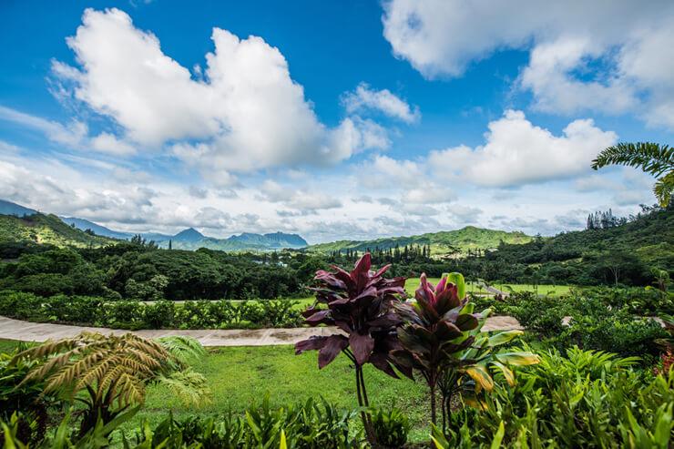 ハワイ最大のメモリアルパーク